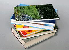 Bücher in leichter Sprache